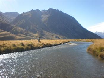 Mountain fishing stream